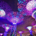 5 Top Rated Places to visit in Singapore