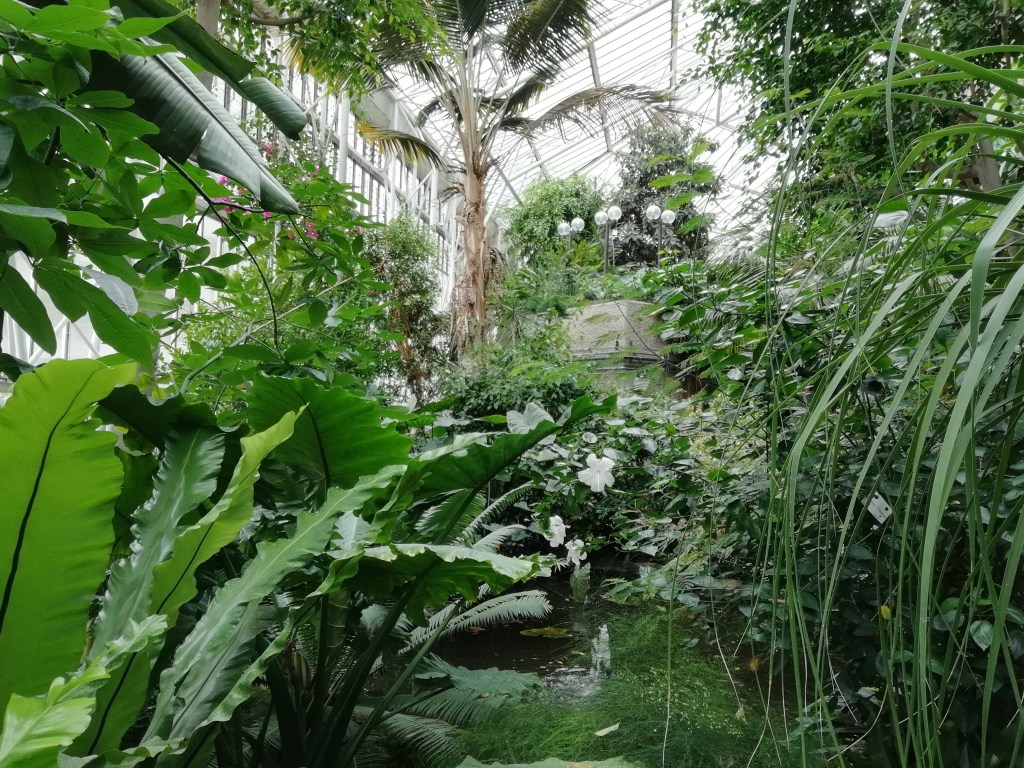 Hidden Gems in London: Non Touristy Things to Do 2