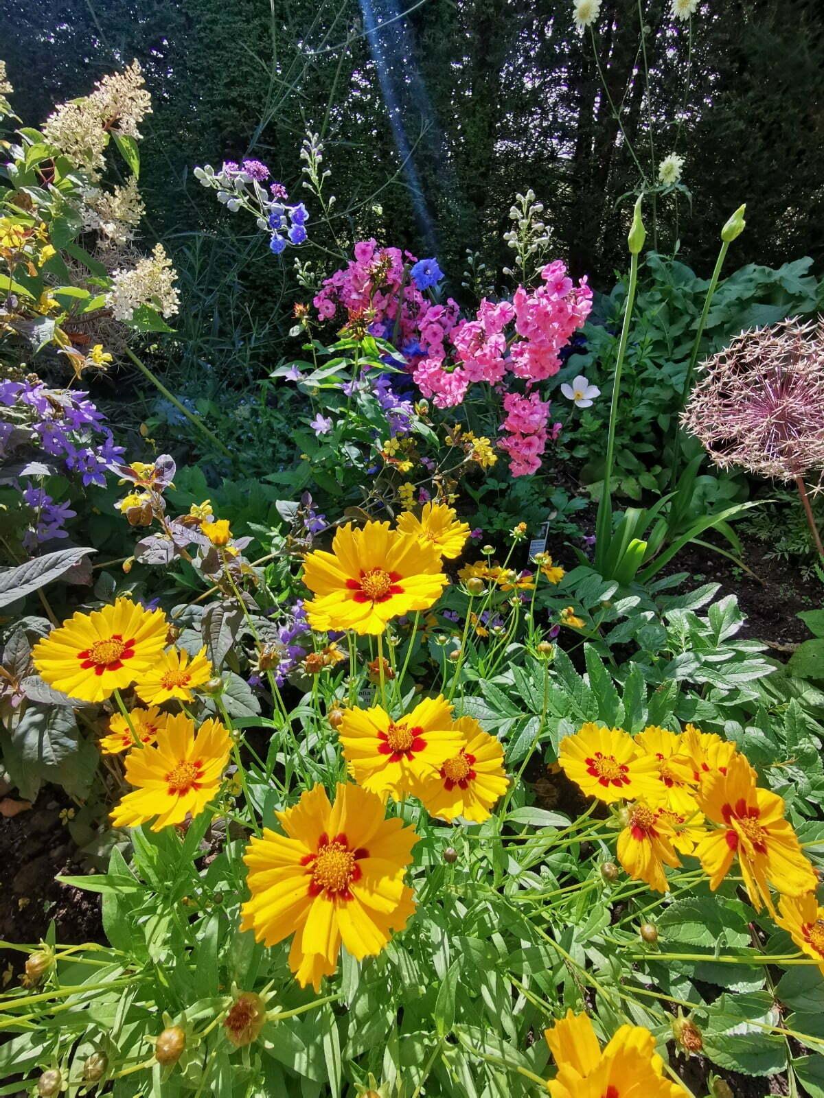 Bateman's Garden: A Kaleidoscope of Colours at Rudyard Kipling's National Trust Home 3