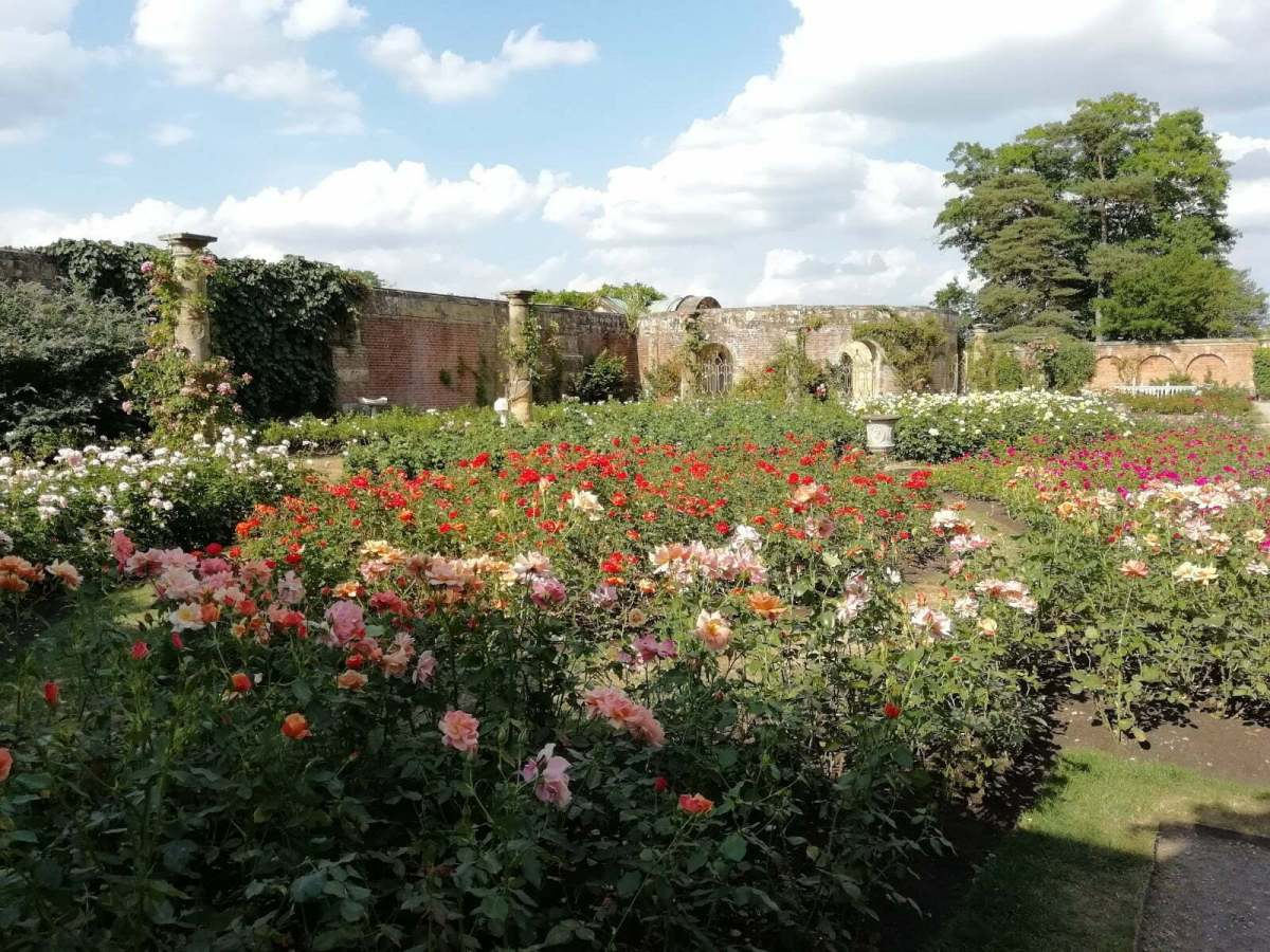 Best Things to See and Do at Hever Castle & Gardens: In Photos 17