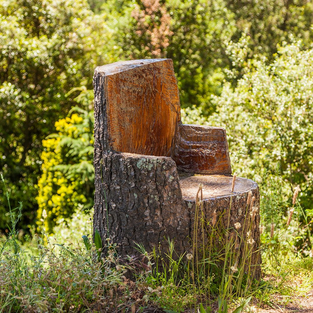 tree stump chairs office chair surabaya creative uses for a elite care