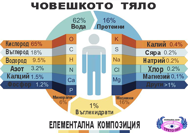 HUMAN_BODY_ELEMENTAL_COMPOSITION_SITE