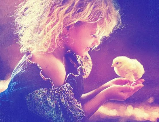nena pollo