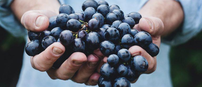 wat maakt resveratrol gezond
