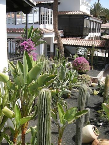 Garden2LaRes small.jpg