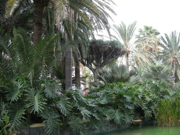 Las Botanical Gardens small.jpg