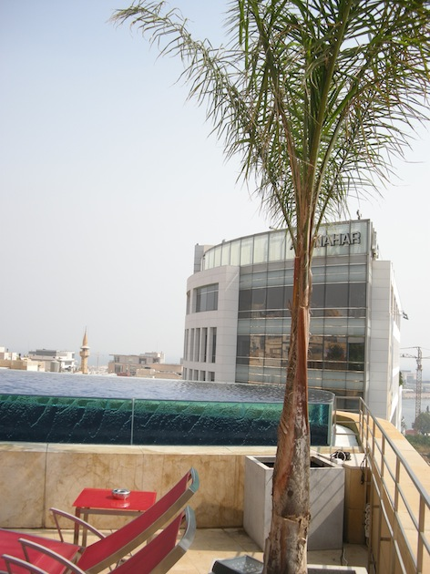 LeGray rooftop Palm small.jpg