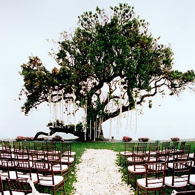 Garden Wedding Ideas Elizabeth Anne Designs The Wedding Blog
