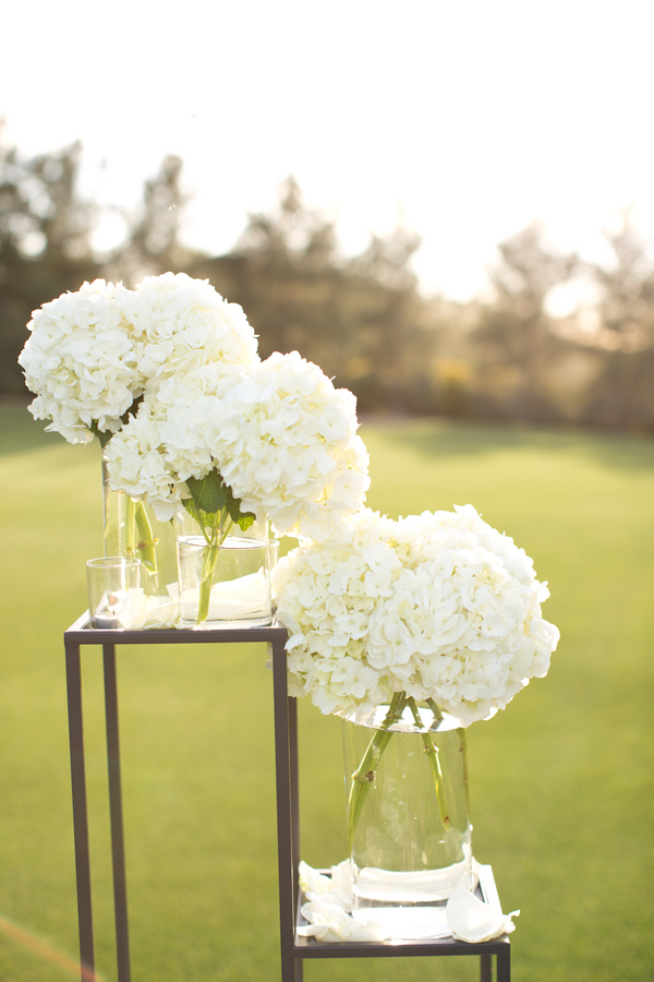 White Hydrangea Wedding Decor  Elizabeth Anne Designs