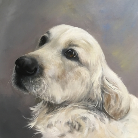 Portrait of a golden retriever in oils