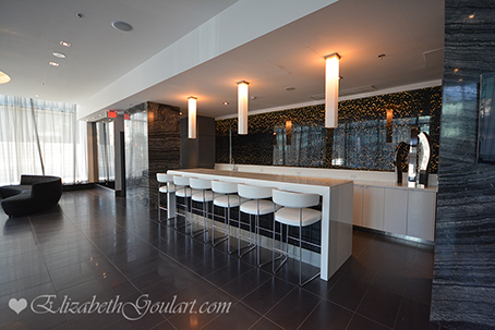 Toronto Condos  Apartments For Rent  Elizabeth Goulart