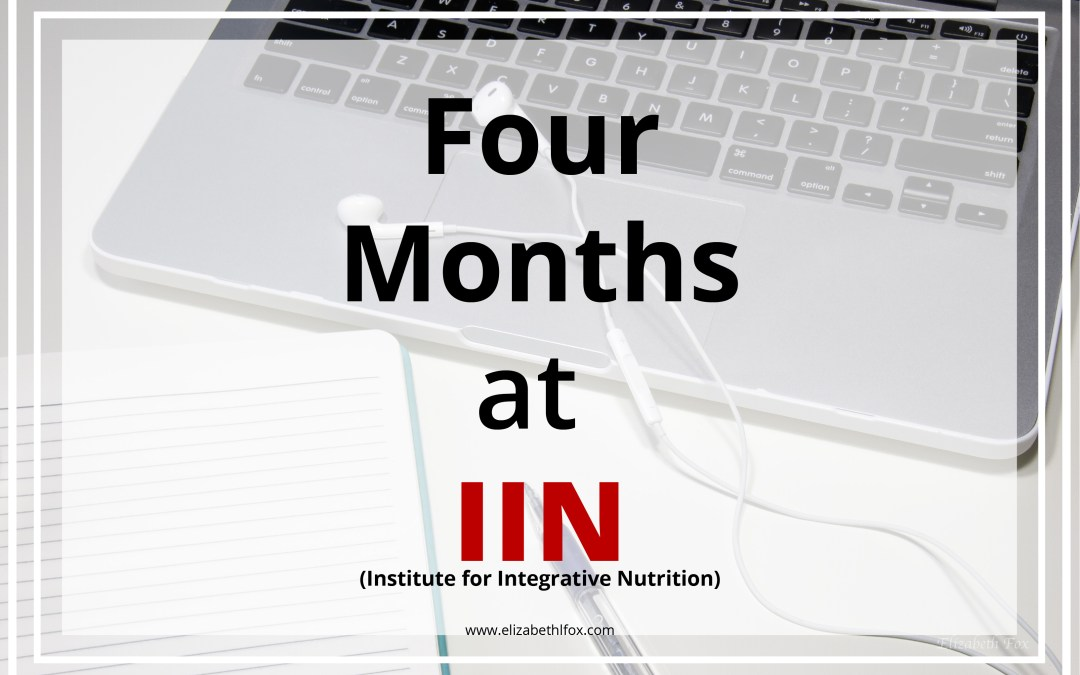 Four Months at IIN