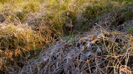 Self Portrait, Kudzu HD video still, 12 min loop 2013