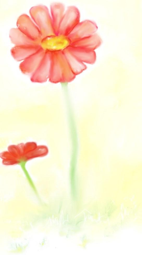 Gerbera Daisy - Digital Art