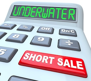 Thoughts About Green Tree Short Sale Collections