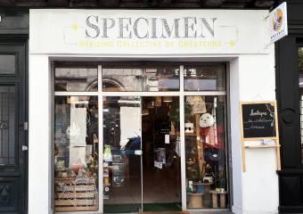 Boutique de créateurs Specimen, Bordeaux