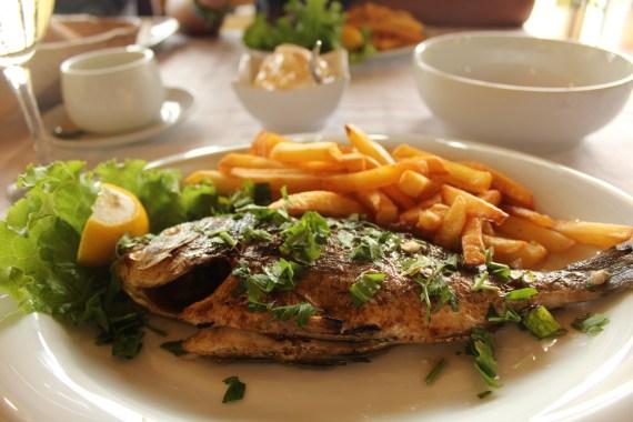 Dinner chalkidki pefkohori