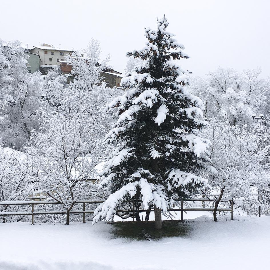 El Jardí_nieve 10