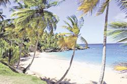 Playa Preciosa: