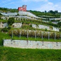 Saale-Unstrut - ein noch junges Reiseziel in Deutschland: Welterbe, Romanik und Wein