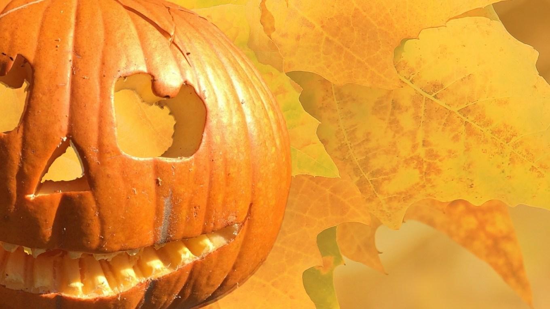 Das Kleine Gespenst Und Die Halloweengeister Elkes