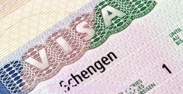 Visa Schengen : VFS ET TLS SE PARTAGENT LE MARCHÉ DES VISAS FRANÇAIS