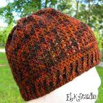 """Pumpkin Spice"" – A Free Crochet Beanie Pattern!"