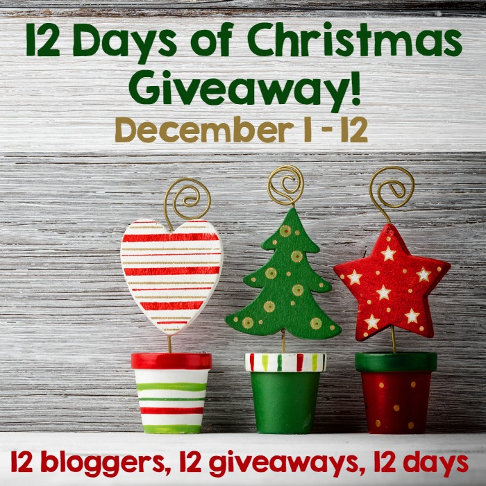 12 Days of Giveaways with 12 Bloggers Hosted by ELK Studio #giveaway #crochet