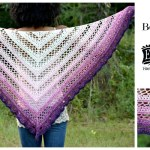 The Southern Beauty Shawl!