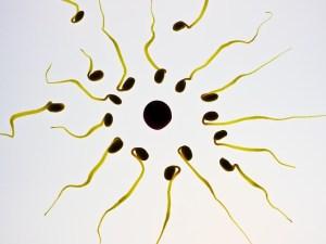 choosing-a-fertility-clinic