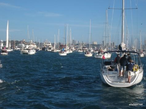 Loads of boats