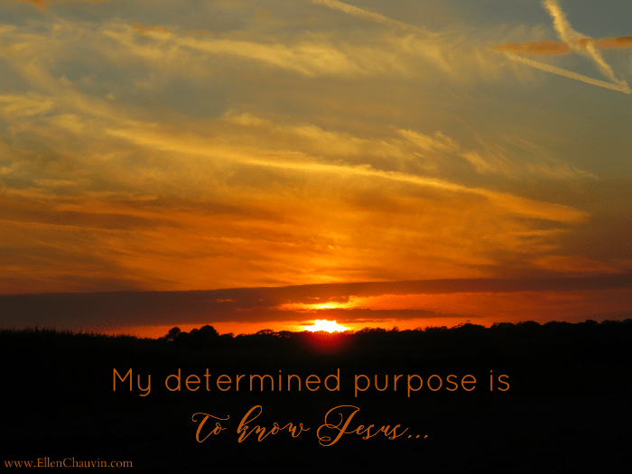 determined-purpose