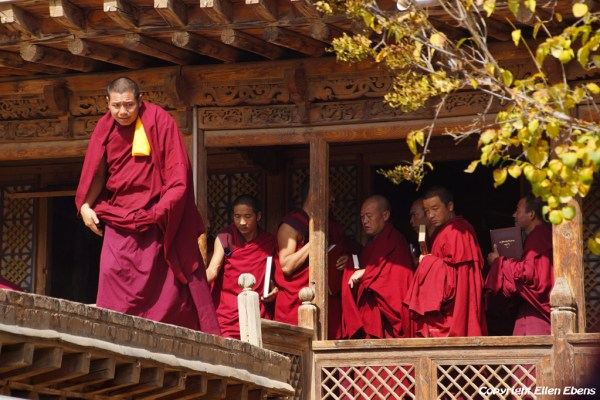 Monks leave a lecture at Gomar monastery near Rebkong (Tongren)