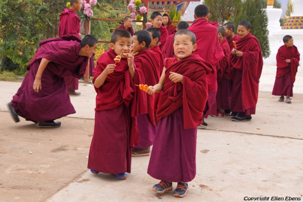 Young monks getting something tasty at Wutun Monastery at Rebkong (Tongren)