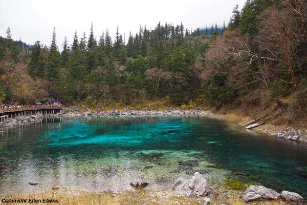 Jiuzhaigou National Park: Five Coloured Pool