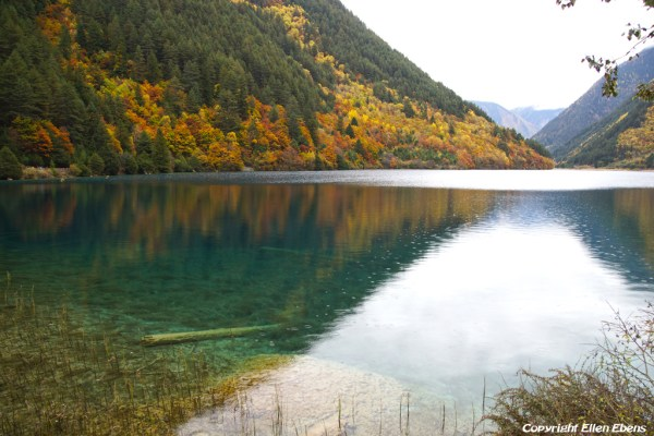 Jiuzhaigou National Park: Rhinoceros Lake