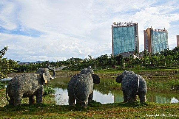 The Lancang River (Mekong) passes through Jinghong. The elephants (statues) are watching the city growing and the rainforest disappearing.