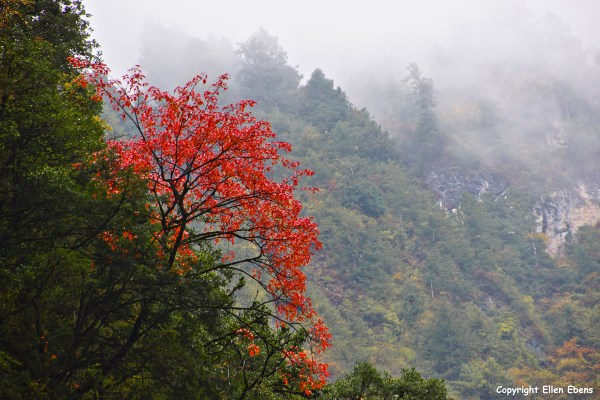 Beautiful mystical landscape with autumn colours at the Danyun Scenery