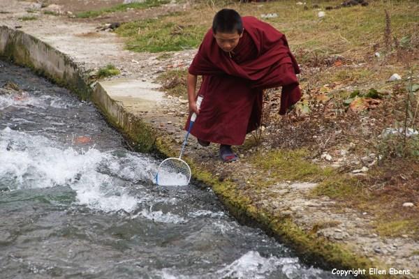 Langmusi young monk