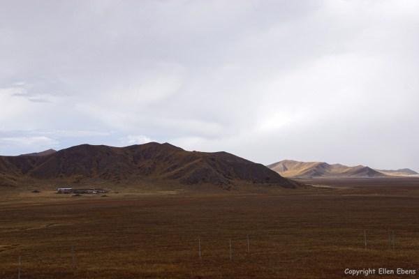 Zoige to Tangke landscape