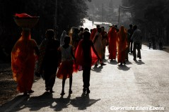 Procession of women at Pachmarhi National Park