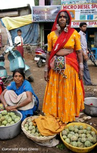 Woman from the Bhil tribe selling vegetables on the street of a little village