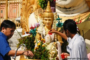 Yangon, offering at the Swedagon pagoda