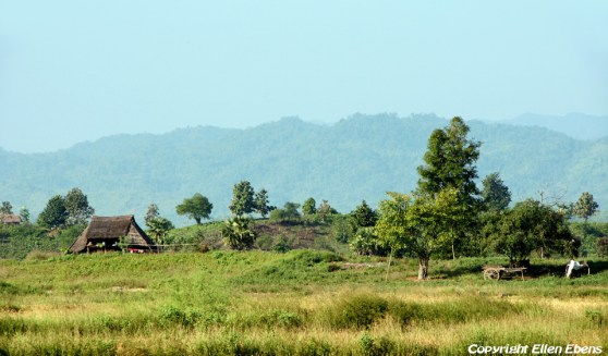 Landscape on the road from Pyay to Pathein
