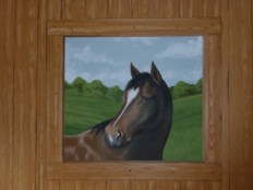 Minnow the horse part of a larger entirely muralled room with several pet portraits included. Mural by Ellen Leigh