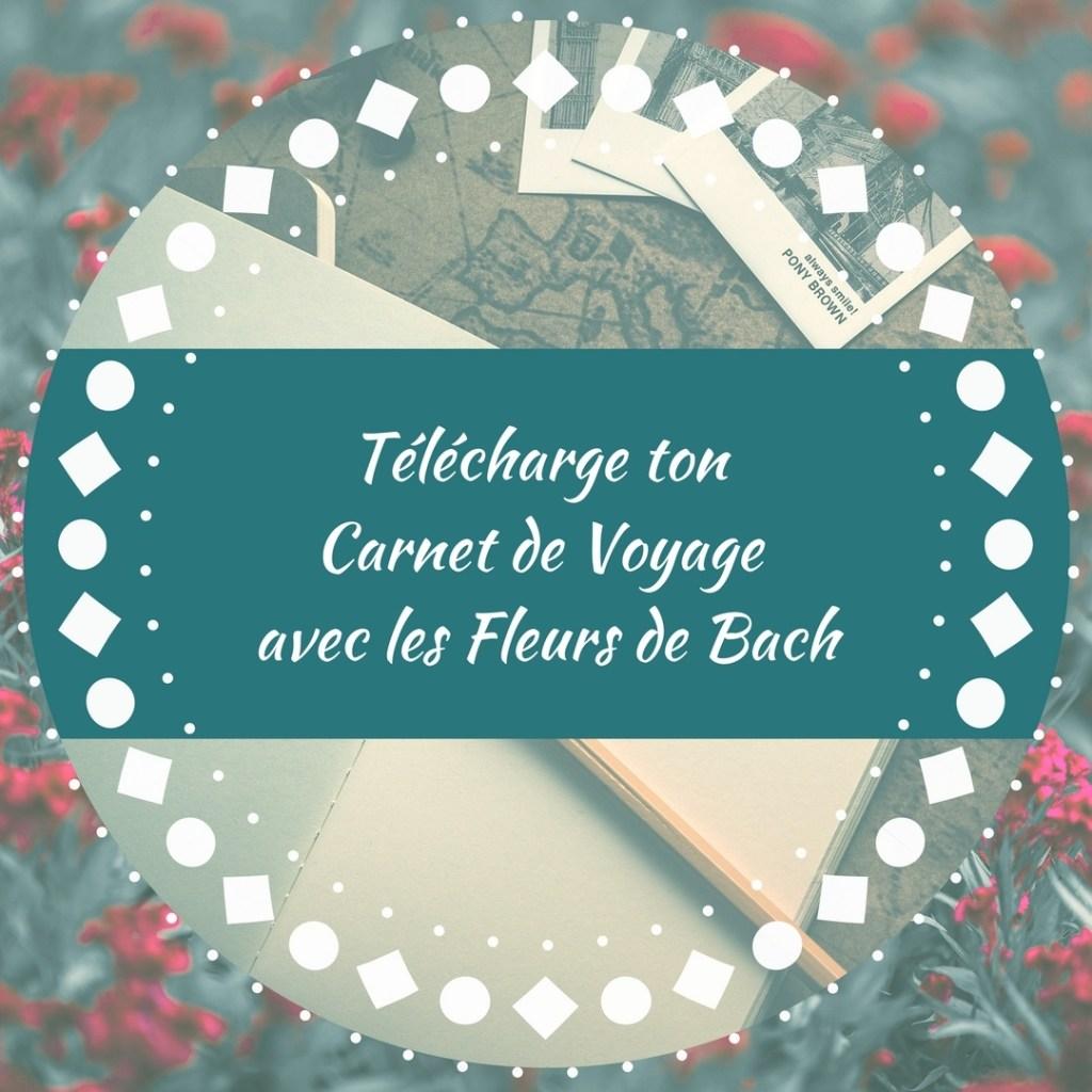 carnet-voyage-avec-Fleurs-Bach