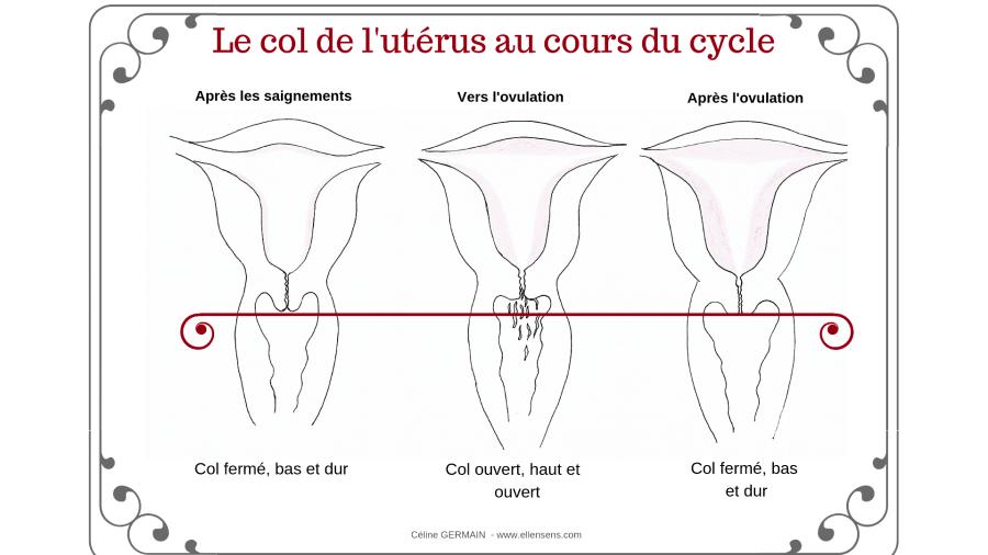 position-col-utérus