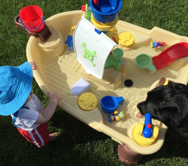 dual purpose water table