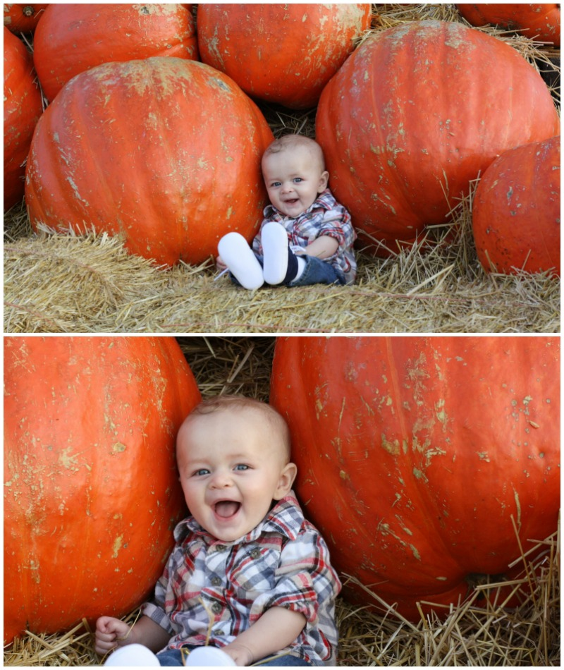 My Little Pumpkins | Ellie And Addie