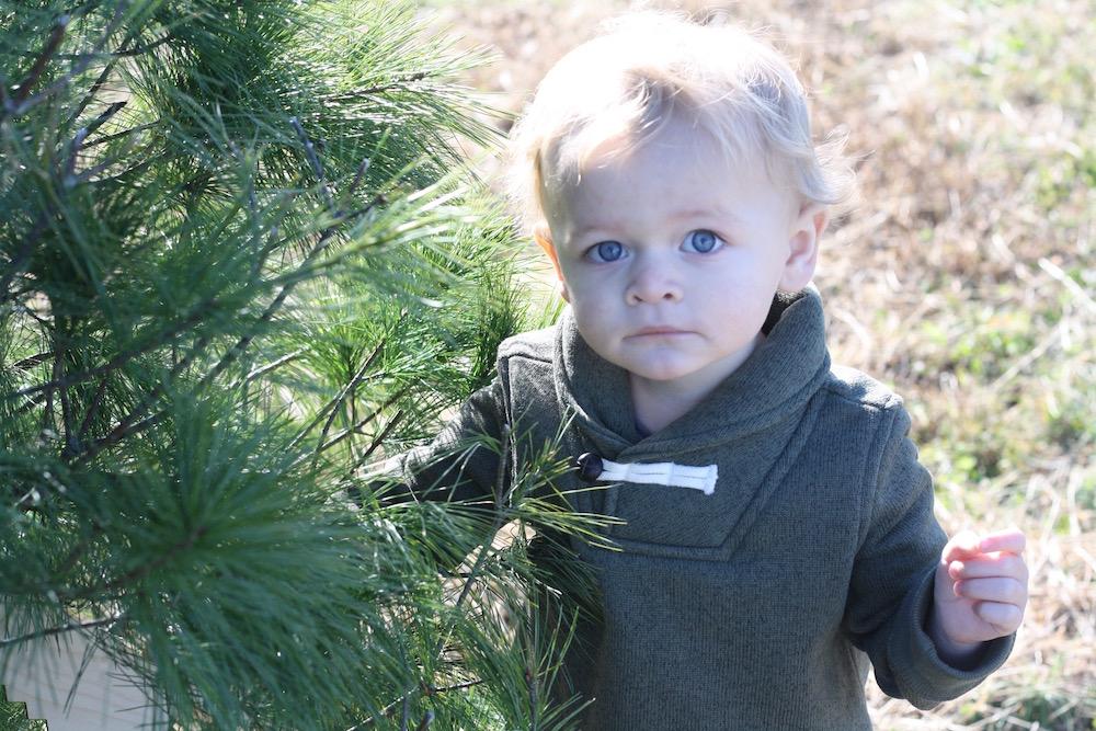 Toddler Boy Holiday Outfits with OshKosh B'gosh | Ellie And Addie